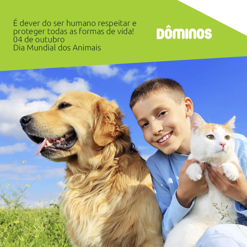 Benefícios de se ter um animal de estimação em casa