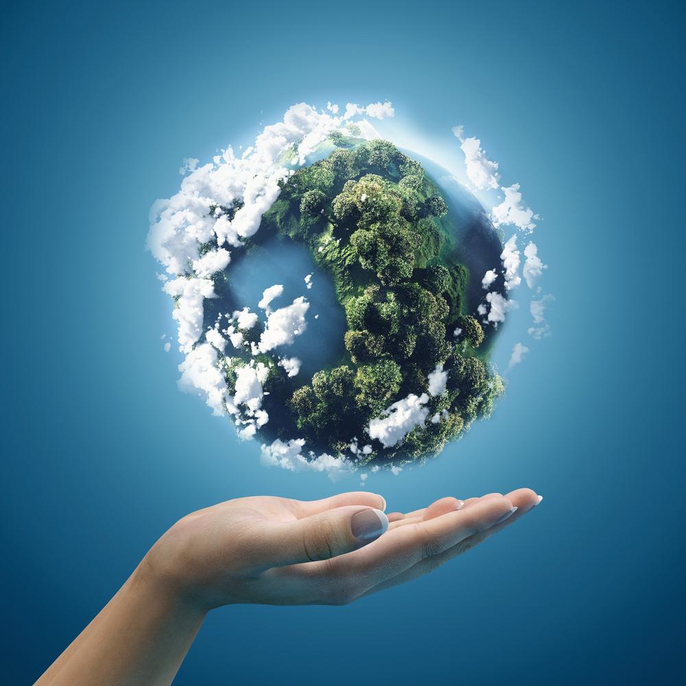 05 de junho – Dia Mundial do Meio Ambiente